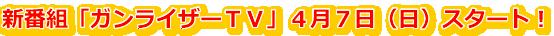 ガンライザーTV